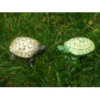 "Cache ""Bestiole"" - Tortue"