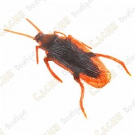"""Cache """"Magnetic insect"""" - Roach"""