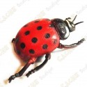 "Cache ""Bestiole"" - Grosse coccinelle"