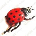 """Cache """"Insecto"""" - Gran mariquita"""