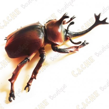 """Cache """"Bestiole"""" - Gros scarabée rhinocéros"""