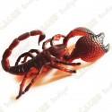 """Cache """"Inseto magnética"""" - Grande escorpião"""