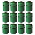 Nano Caches aimantées x 12 - Vertes