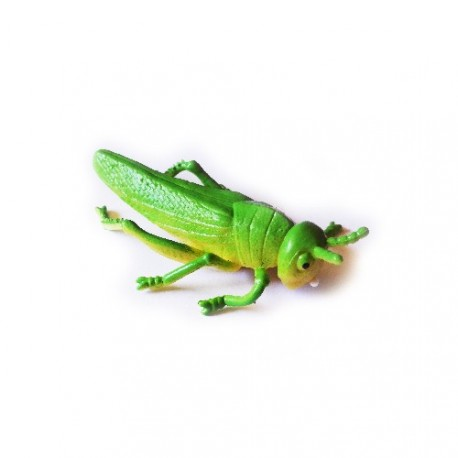 "Cache ""Insecto"" - Saltamontes"
