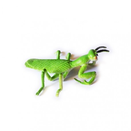 """Cache """"Insecto"""" - Mantis religiosa"""