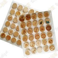 6 Pochettes plastiques à capsules pour géocoins en bois - 30 cases